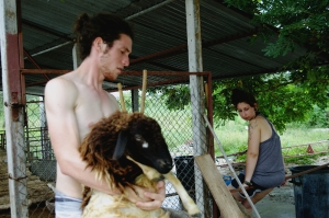 Ratchaburi, Little farm friendly project, Thailand, wwoof, helpx, workaway
