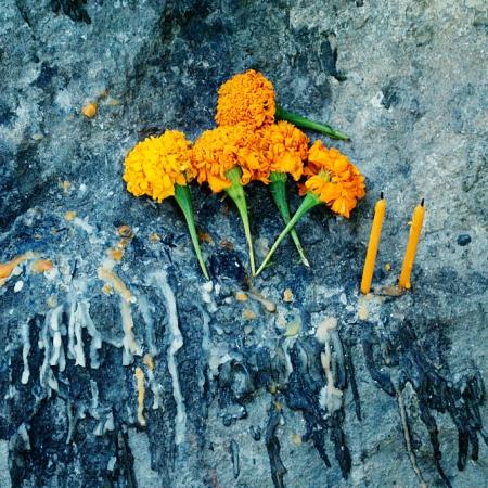 Laos, Luang Prabang, Saffron, Flowers, Buddhism